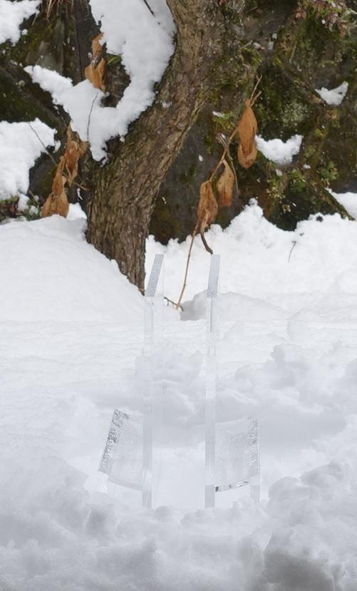 まぶさび花・雪景色1.jpg